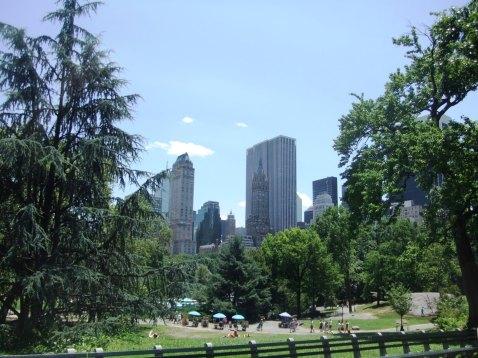 New York 2012 243