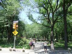 New York 2012 245